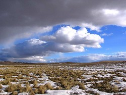 Billowing white clouds floating over the sparse Montana winter landscape.  Taken 1/19/2006.